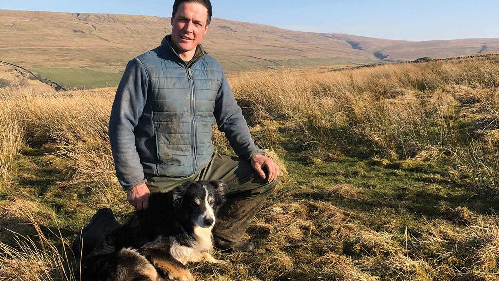 In your field: Thomas Carrick - 'We're freeze-branding sheep in order to avert more thefts'