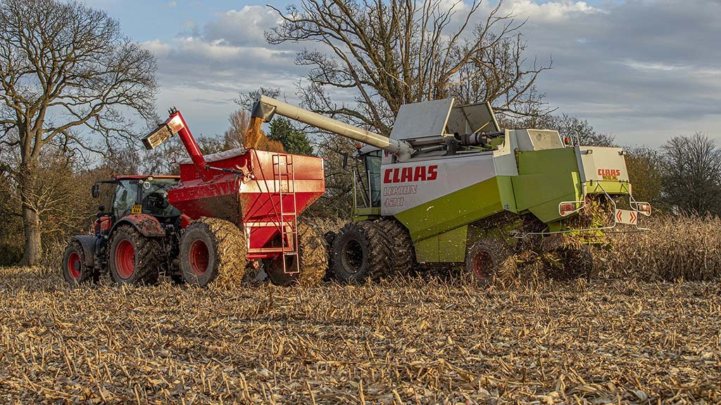 Workshop: Custom grain chaser cuts compaction