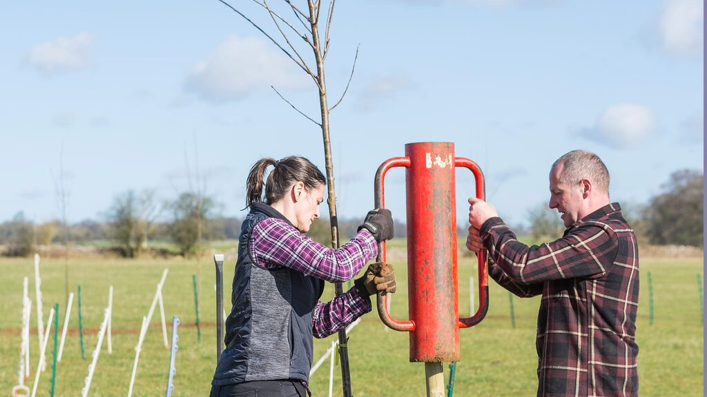 National Trust farms begin major tree planting journey
