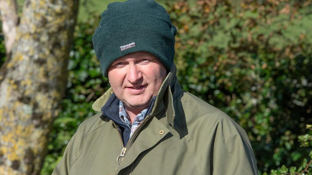 In your field: Mike Harris - 'One of our bulls has swapped Dorset for Cornwall and Tintagel'