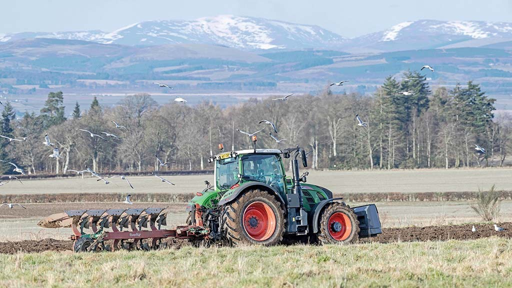 Scottish farm incomes plunged in 2019/20
