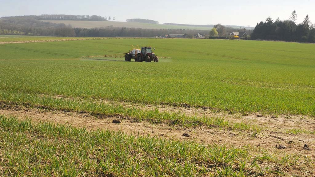 Top tips for mitigating drought stress in crops