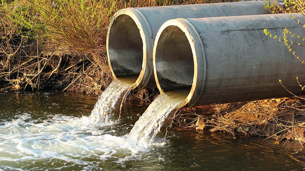 Sewage dumped in rivers sparks farmers' fury