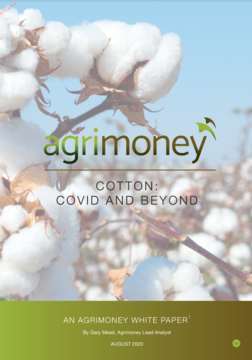 ANALYSIS: Agrimoney's White Paper - Cotton: Covid and Beyond