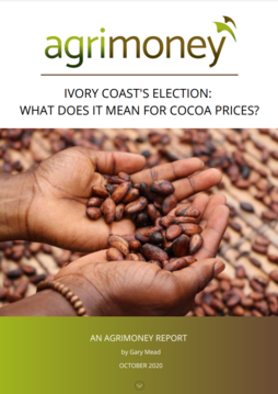 What will Ivory Coast's election mean for cocoa prices? Agrimoney white paper
