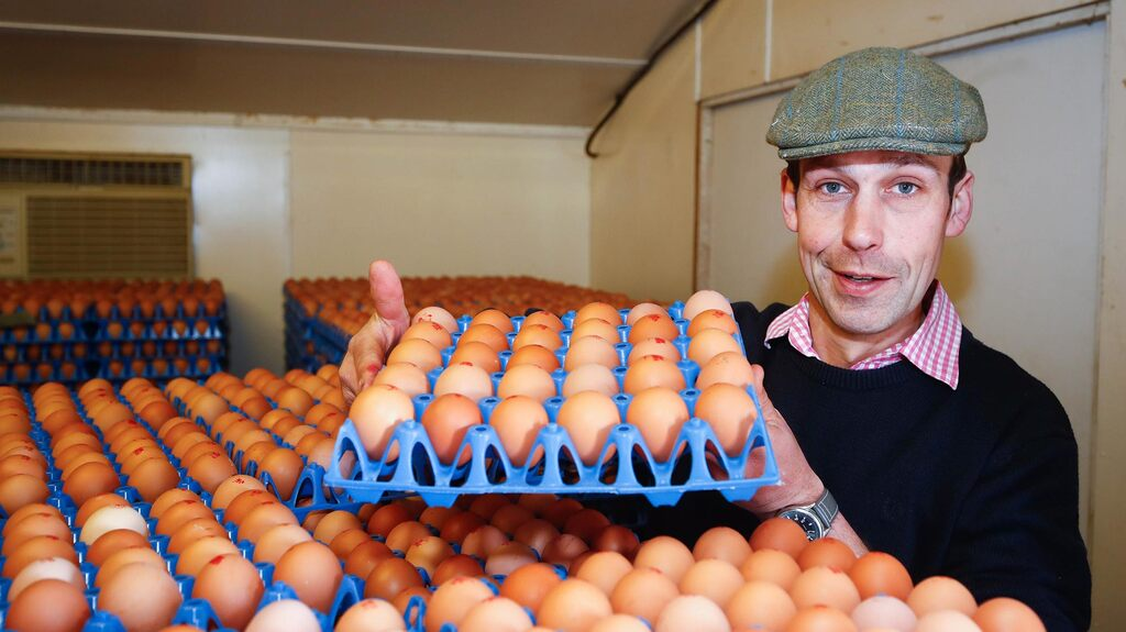 Free-range egg venture secures farm for fourth generation