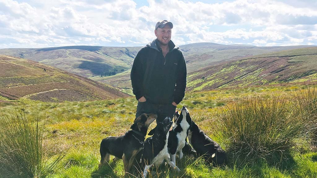 SHEEPDOG SPECIAL: Huntaways key to working dog team in the Borders