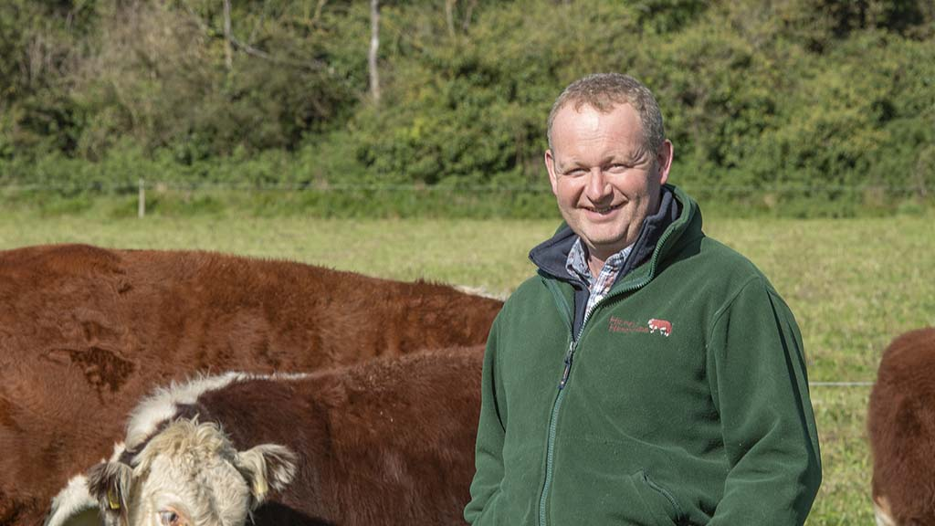 In your field: Mike Harris - 'Spring has sprung although the northerly wind is nagging'