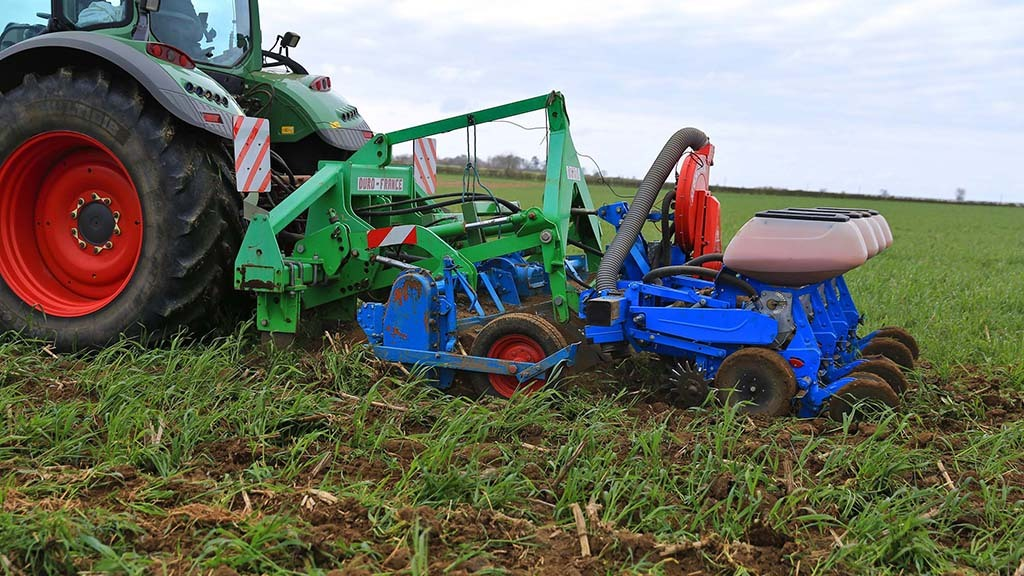 Maize is strip till planted into cover crops using a homemade system.