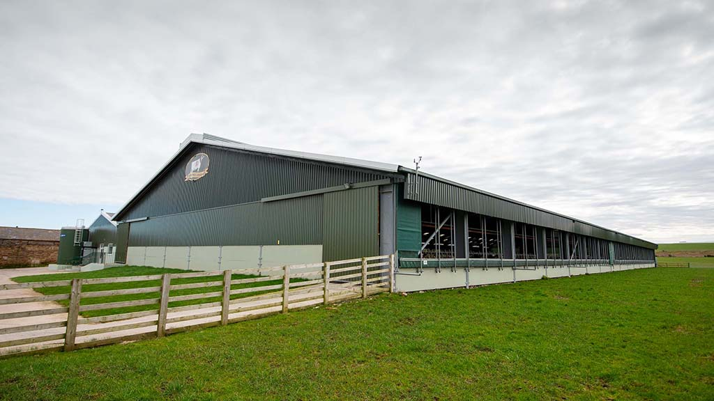 A new build dairy unit at the Mattinson family's Bridge Farm was the perfect opportunity to consider new ways of feeding the herd.