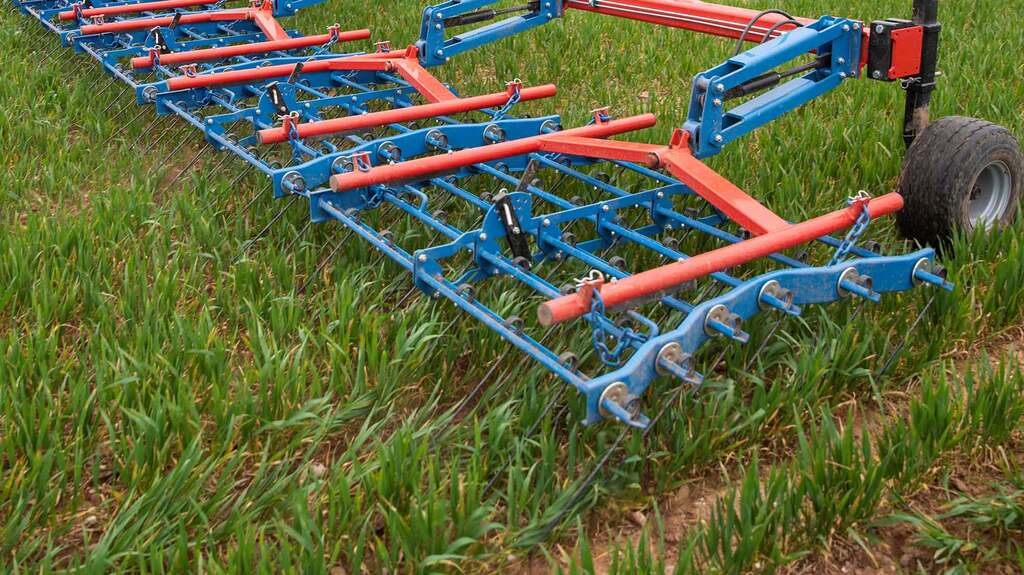 Not only does the harrow disturb weeds, but it breaks any capping on the surface and removes dead leaves from the crop
