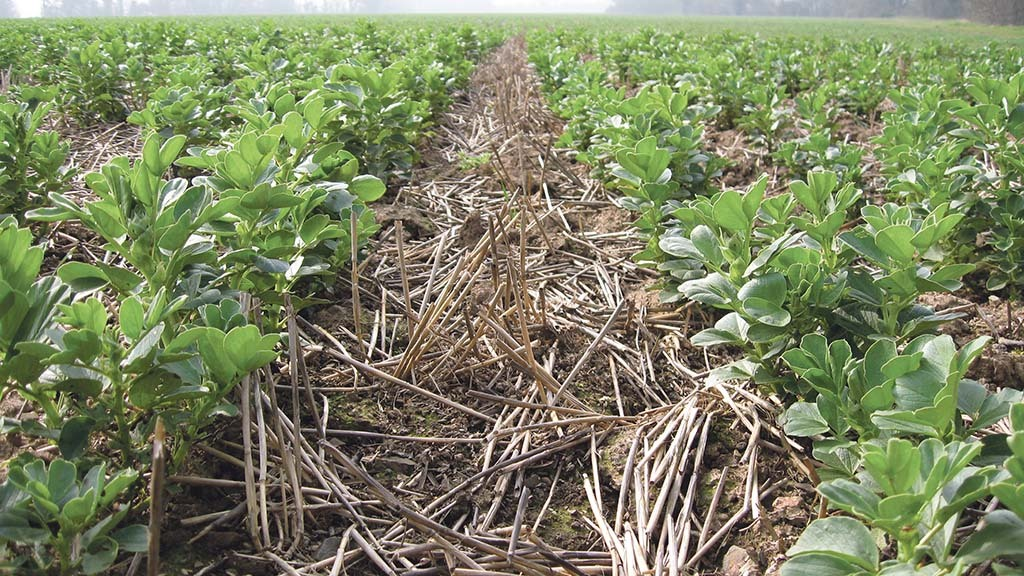 Seed treatment withdrawn with short notice