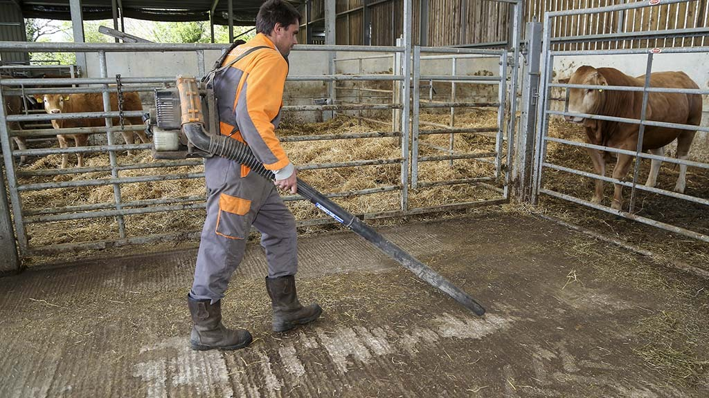 Waste feed is cleared up from underneath feed troughs using a blower machine