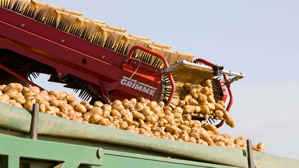 End to market pricing as AHDB Potatoes winds down