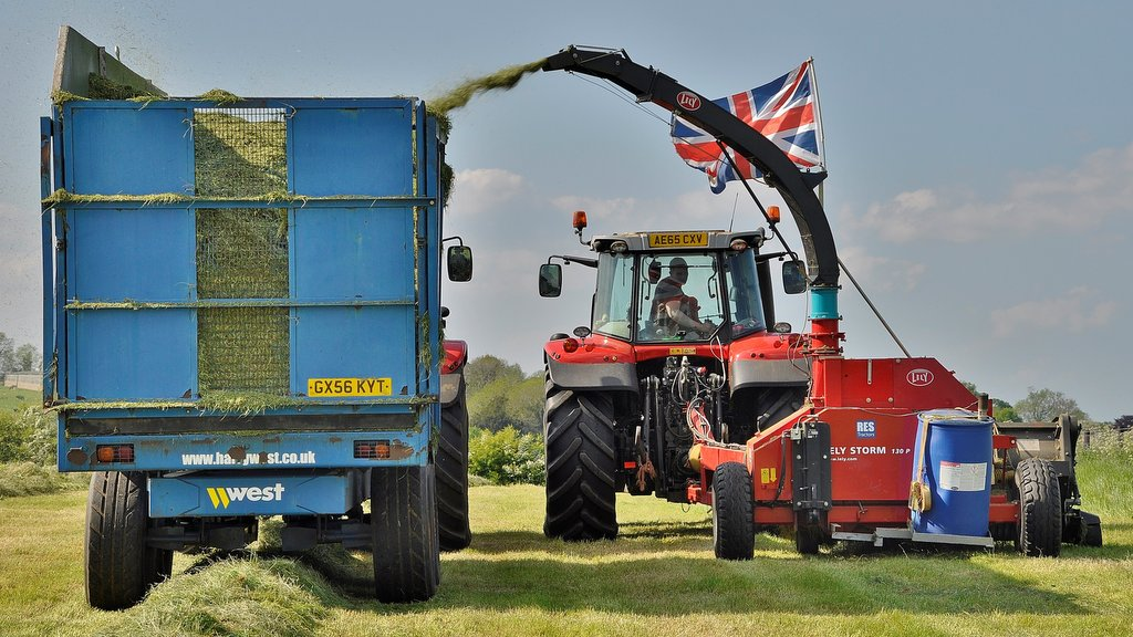 Pictured on the 7718 forage harvesting, tractor driver Matthew Langrick is a key member of the Gaulby Lodge team, where he also helps maintain and service the farm's equipment.