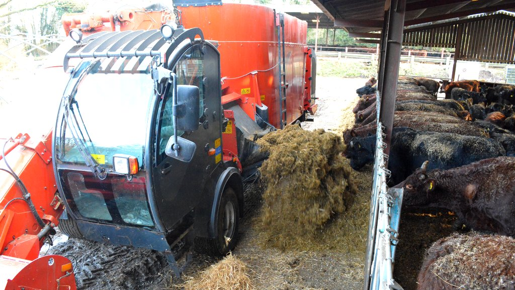 Feed is delivered via a side conveyor.