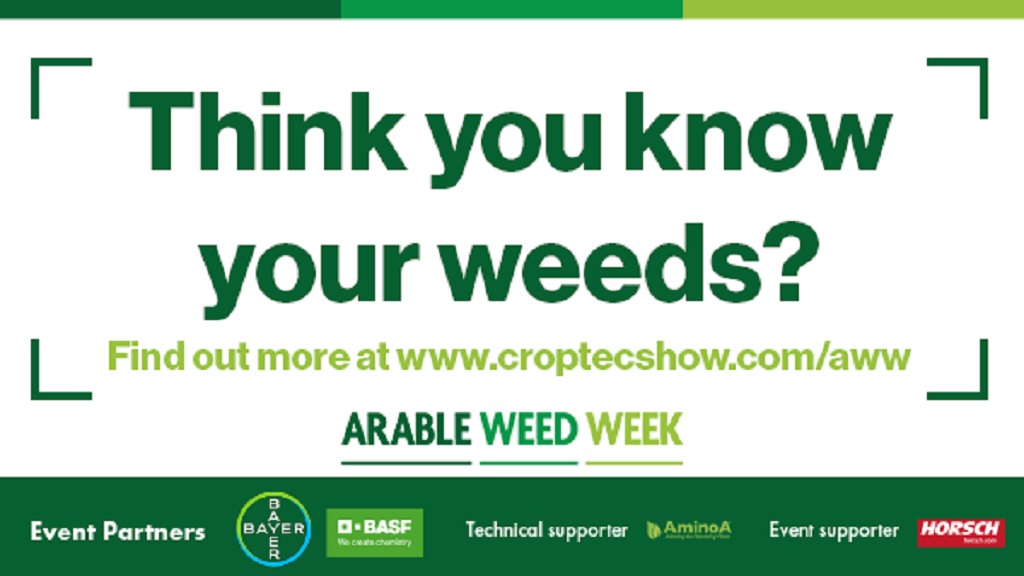 Arable Weed Week to shine a light on the future of sustainable weed management
