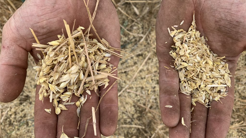 The Seed Terminator mills chaff to a fine consistency (right in pic), destroying weed seeds.