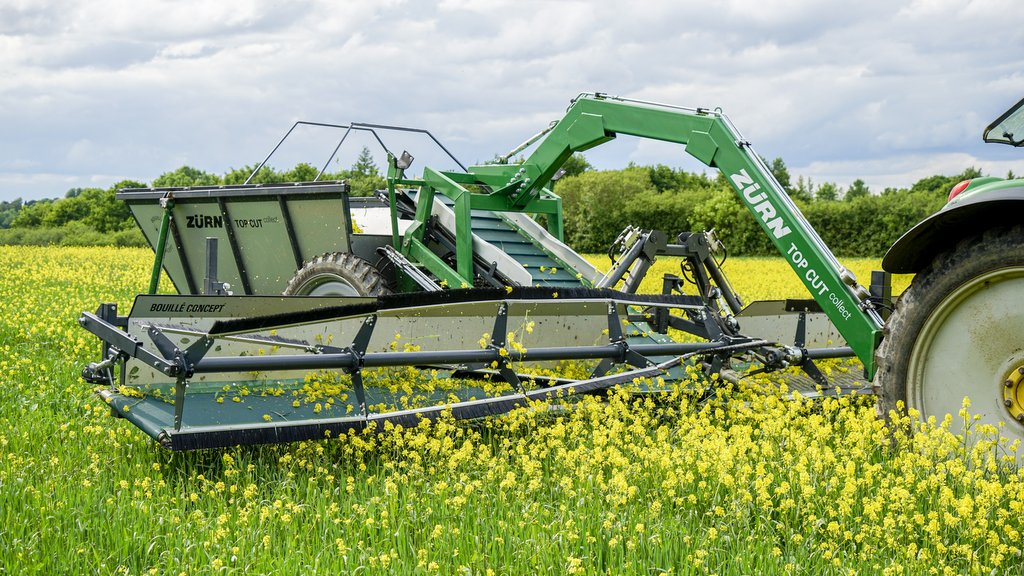 Weed surfing is another mechanical weed control approach, with Zurn's Top Cut Collect 'foraging' weeds standing above the crop prior to harvest, preventing seed shedding.