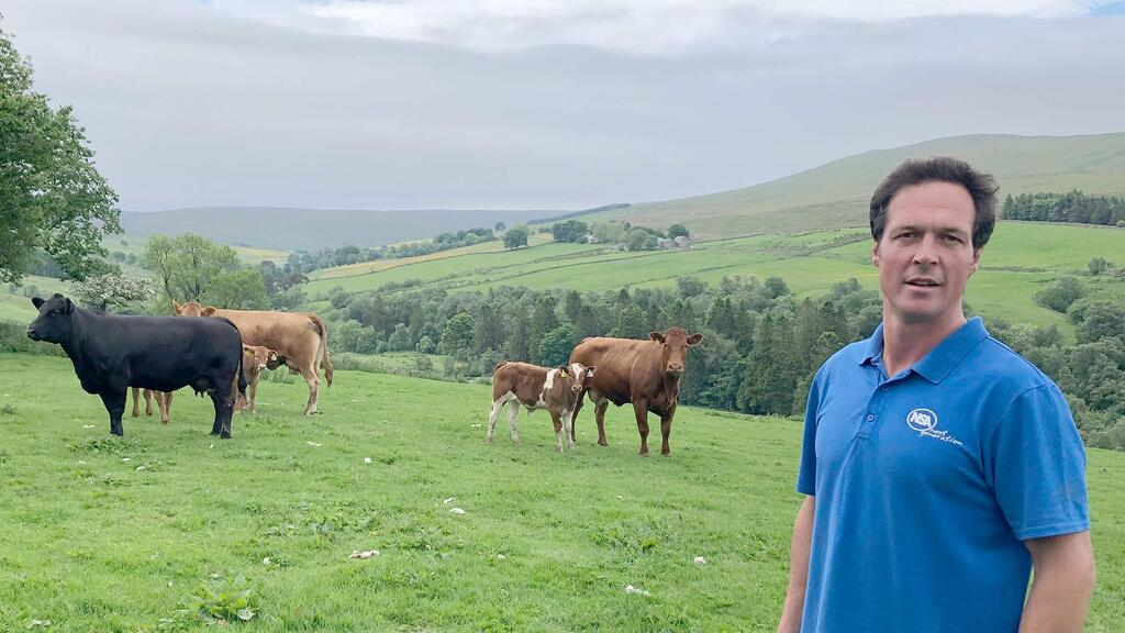 In your field: Thomas Carrick - 'Good prices are need to cover the cost of spring feeding'