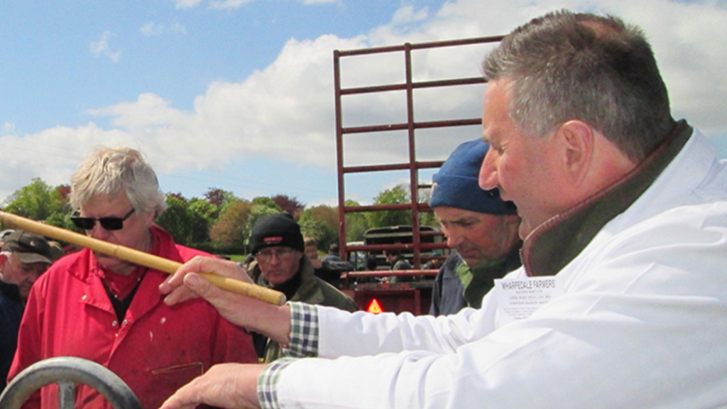 View from the rostrum: Lamb prices are still holding strong