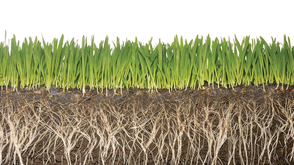 Soil Carbon Code for UK farmers to be developed