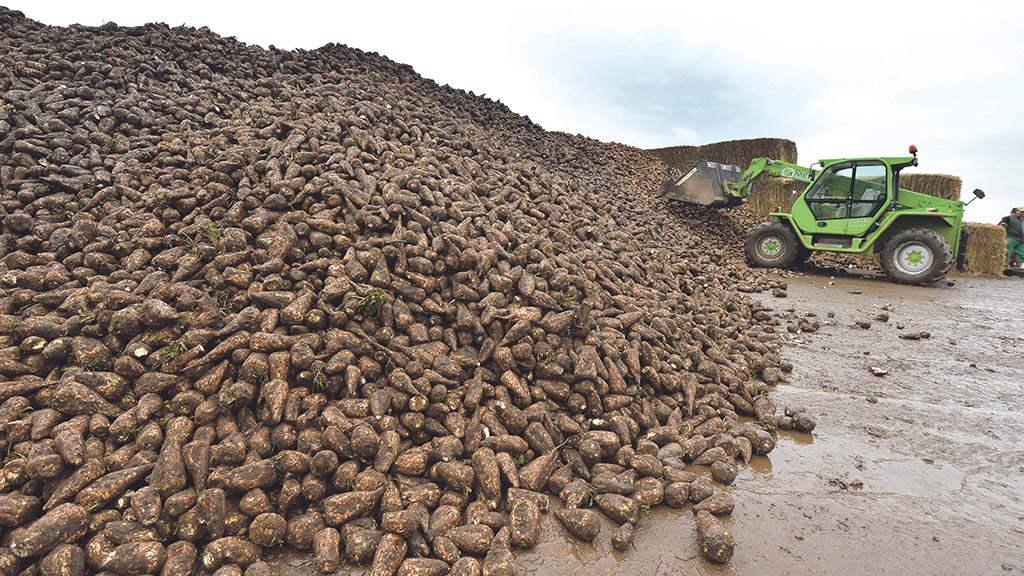 Growers told to prepare for sugar beet haulage delays