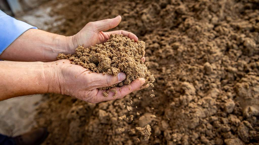 The choice of animal feed is critical in the drive for net zero and has the potential to make a massive impact.
