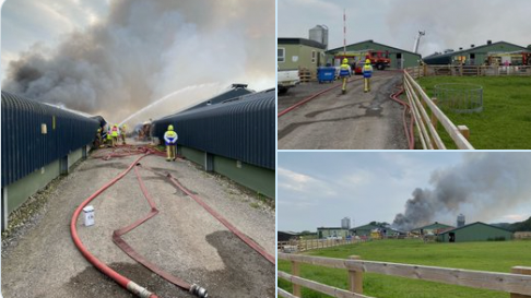 50,000 chickens destroyed in farm fire