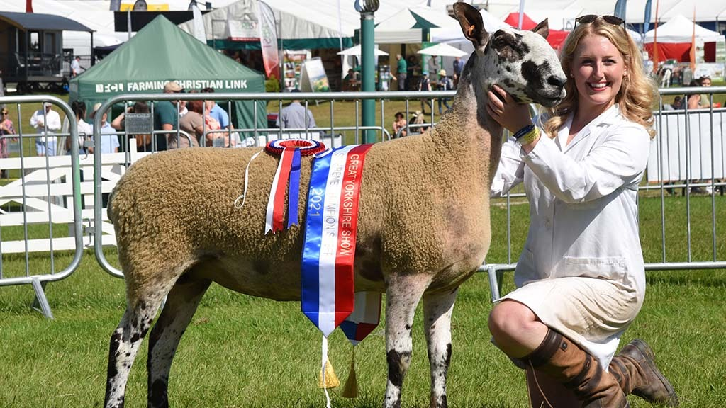 Bluefaced Leicester claims Great Yorkshire Show inter-breed title