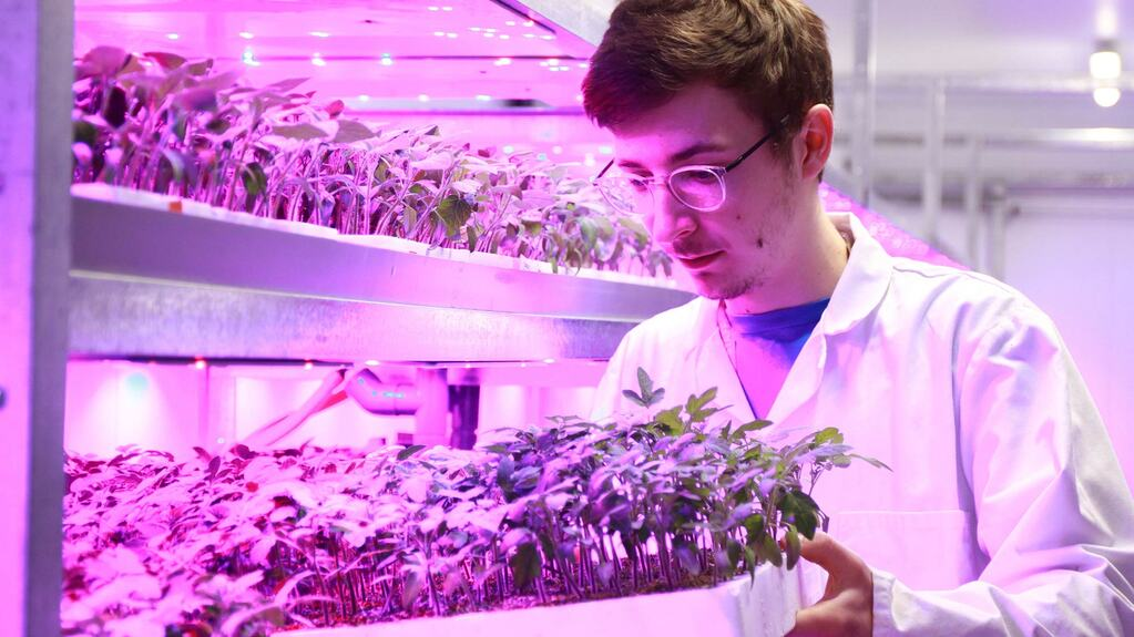 Careers: More students are turning to practical based subjects such as agriculture