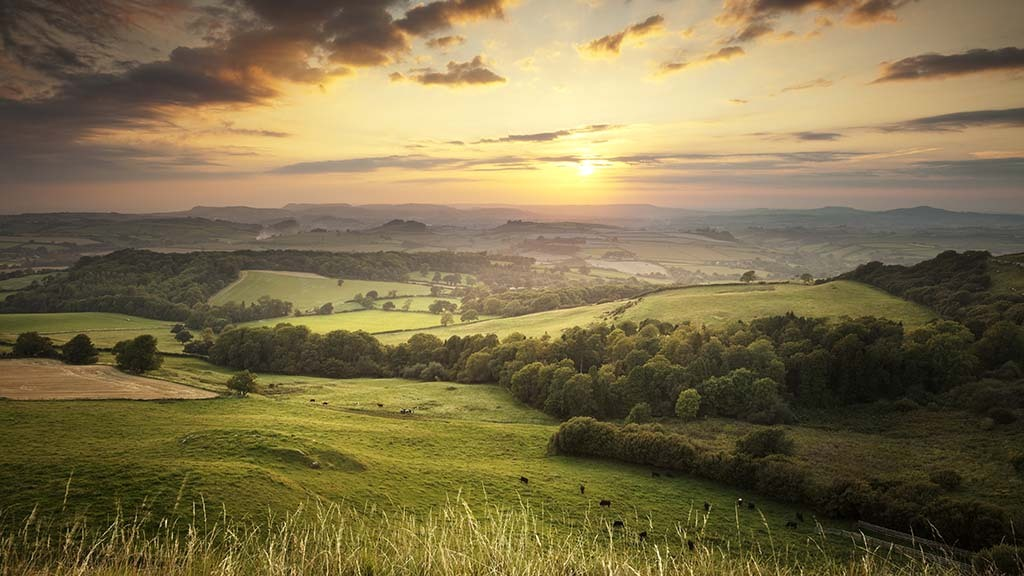 Uptake of Sustainable Farming Incentive pilot may fall short of Defra target