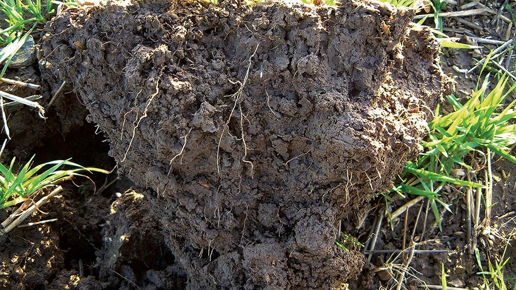 Government must take soil health seriously