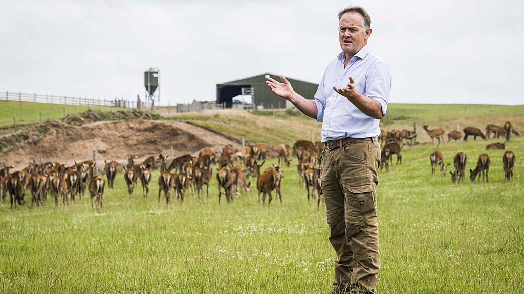 Ongoing ground and genetic improvements behind deer enterprise