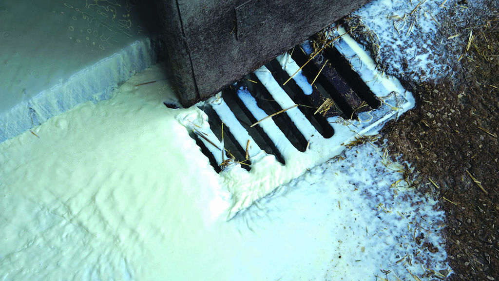 Farmers dump milk as haulage crisis continues to ripple