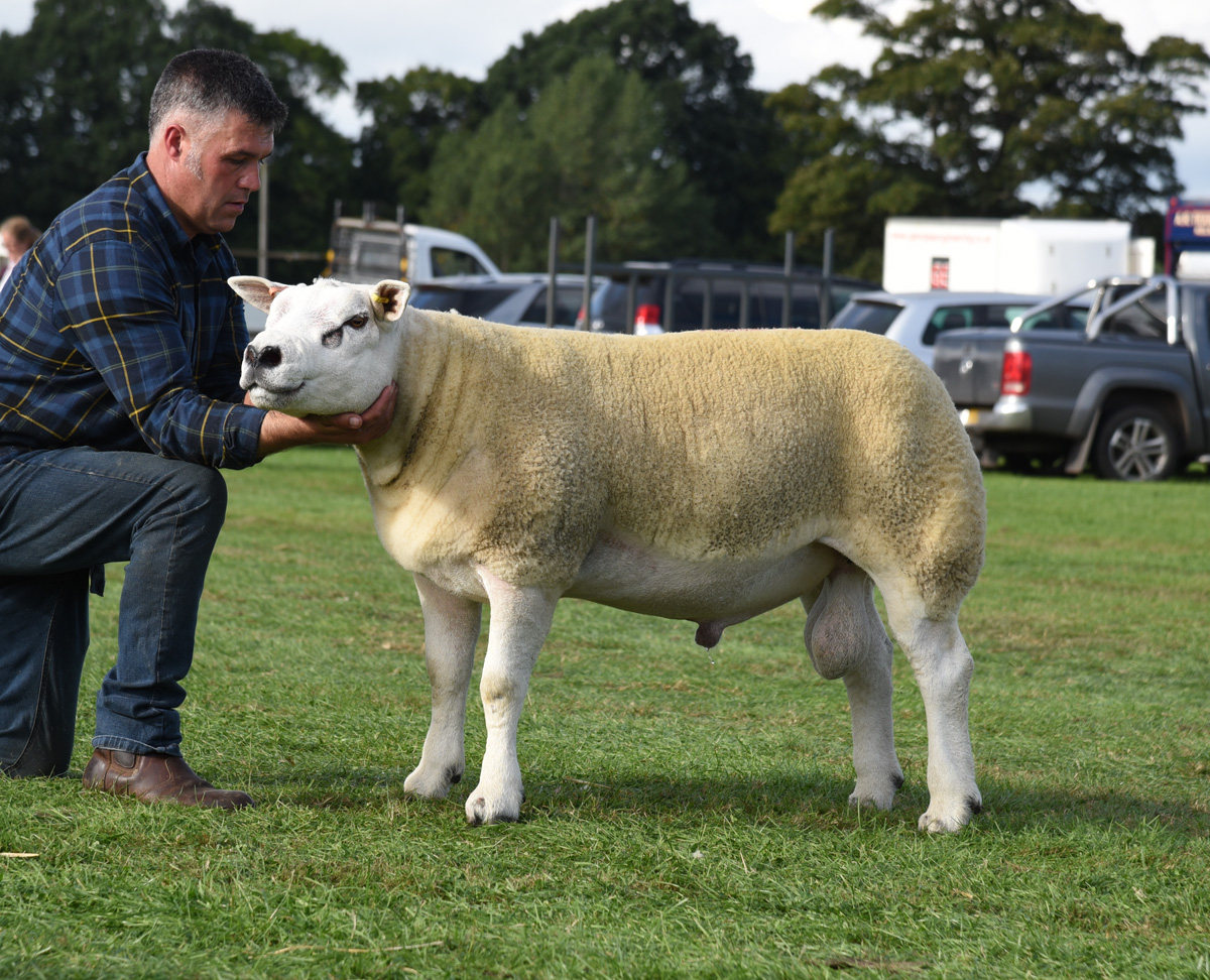New record of £65,000 set at Kelso